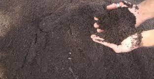 Adubos, terras e fertilizantes